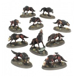 mighty-games-Dire Wolves